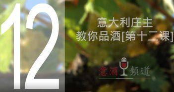 19pindao-12-意大利庄主教你品酒[第十二课]