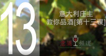 19pindao-13-意大利庄主教你品酒[第十三课]
