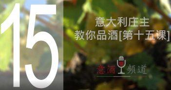 19pindao-15-意大利庄主教你品酒[第十五课]