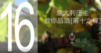 19pindao-16-意大利庄主教你品酒[第十六课]