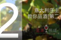 19pindao-2-意大利庄主教你品酒[第二课]