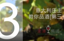 19pindao-3-意大利庄主教你品酒[第三课]