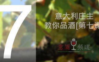 19pindao-7-意大利庄主教你品酒[第七课]